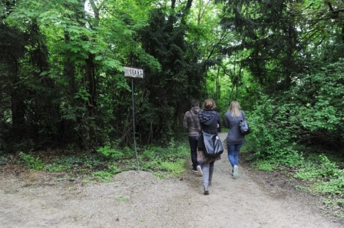 Seit vergangenem Donnerstag kann man durch den Währinger Sternwartepark spazieren. Der bisher fast unberührte Dschungel rund um die Universitätssternwarte wurde der Öffentlichkeit zugänglich gemacht (Foto: Heribert Corn)
