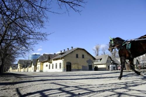 Stallungen neben der Trabrennbahn: Unter anderem hier sollen ab 2015 Büros und Wohnungen entstehen (Foto: Heribert Corn)